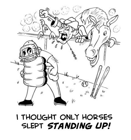 only horses sleep standing up